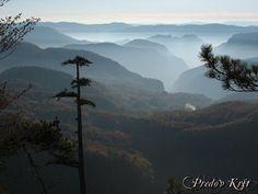 Predov Krst,Mt.Tara,Serbia