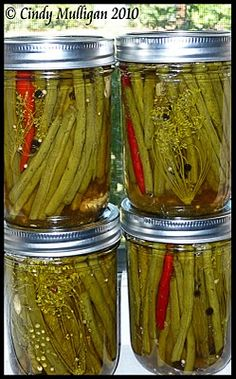 Gumbo Ya Ya: Spicy Pickled Green Beans My family calls them Dilly Beans :) Spicy Green Beans, Pickled Green Beans, Spicy Pickled Beans, Dilly Beans Recipe Spicy, Spicy Pickled Asparagus Recipe, Spicy Pickle Recipes, Canning Pickles, Spicy Pickles, Pickles Recipe