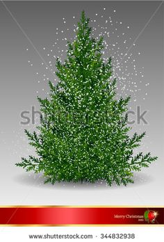pine tree,Christmas Tree Pine Isolated on White snow,Branch of Christmas tree with pine cones,pine tree,Pine branch isolated on white,Winter landscape with fir trees and falling snow