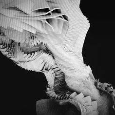 raphcrespin#beautyofdynamic #falling #computation #motion