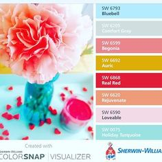 Loveable SW 6590 - Sherwin-Williams