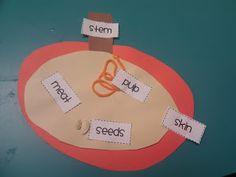 apple craft- science