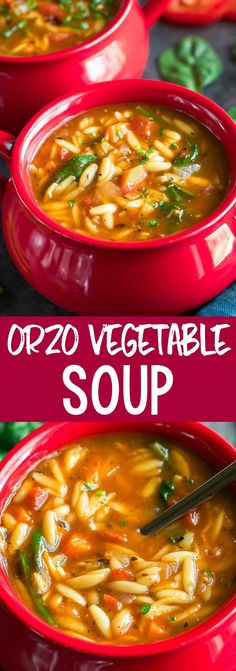 This Orzo Vegetable Soup is a quick and easy one-pot wonder and a delicious way to warm up on a cold day! The leftovers are AMAZING the next day so feel free to use this scrumptious soup for meal prep lunches or dinners. We love it bunches! Rock Crock Recipes, Healthy Soup Recipes, Healthy Dinner Recipes, Vegan Recipes, Chef Recipes, Easy Recipes, Cooking Recipes, One Pot Orzo, One Pot Dishes