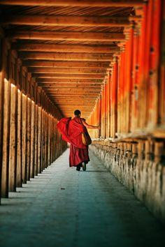 Buddhist monk                                                                                                                                                                                 More