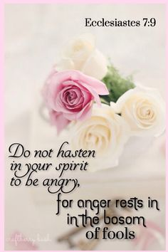 """""""Be not hasty in thy spirit to be angry: for anger resteth in the bosom of fools."""" Ecclesiastes 7:9 KJV"""