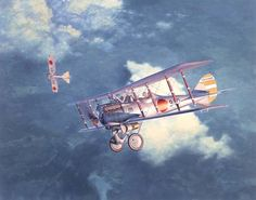 """Nakajima Ko-4 (Nieuport 29C1) Fighter"", Shigeo Koike"