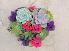 """[two_fourth class="""""""" last=""""yes"""" ]Heart shape succulent arrangement is shipped as a kit. It includes one glass vessel, plants, colored sand, gravel and step by step instructions with photos for easy assembly.[/two_fourth]"""