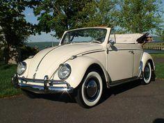 vintage vw beetle | Build-A-BuG, 1962 VW Beetle Convertible for sale!* | Classic VW ... #classicvolkswagenbeetle