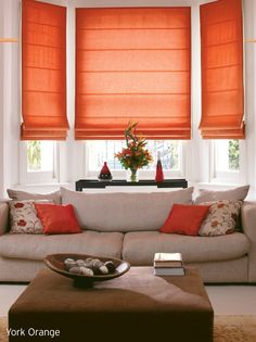 Lounge Blinds and color pop! this type of window treatment for the two regular windows in the great room