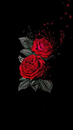 Creative images - Rose Wallpaper Full HD - My Wallpaper Flower Phone Wallpaper, Dark Wallpaper, Pastel Wallpaper, Cute Wallpaper Backgrounds, Aesthetic Iphone Wallpaper, Galaxy Wallpaper, Cellphone Wallpaper, Desktop Wallpapers, Beautiful Flowers Wallpapers