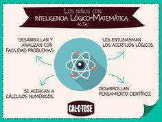 Si tu pequeño tiene estas características, tiene la Inteligencia Lógico Matemática Alta.