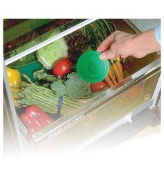 Avoid throwing away your produce and help save money by keeping your produce fresher for longer with the ExtraLife Produce Saver. Kitchen Items, Kitchen Hacks, Kitchen Gadgets, Kitchen Products, Fridge Organisers, Provident Living, B Recipe, Refrigerator Storage, Gadgets And Gizmos