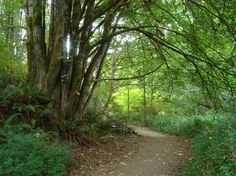 Manchester State Park, Port Orchard WA
