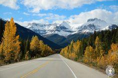 Ein #Roadtrip durch #Kanada in zwei Wochen. Welche #Highlights sollte man in der…