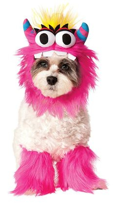 Pink Cookie Monster Dog Costume for Halloween.Rubies Pink Monster dog costume has a face hood that attaches with velcro under the chin & 1 pair of fluffies for front legs. Perfect girl dog costume for Halloween or photo fun. Dog Halloween Costumes, Pet Costumes, Halloween Fancy Dress, Costume Ideas, Halloween Items, Scottish Terrier, Boston Terrier, Pet Dogs, Dog Cat