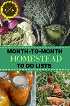 To Do Lists (Month-to-Month) Comprehensive Website about Homesteading! Stay super organized this season with monthly to do lists!Comprehensive Website about Homesteading! Stay super organized this season with monthly to do lists!