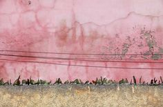 """Jessica Backhaus, """"Once Still and Forever"""""""