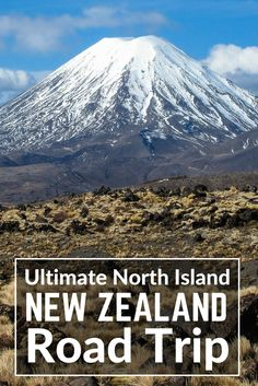 New Zealand North Island itinerary Road Trip. Journey across New Zealand's North Island by Rail and Road in my ultimate New Zealand itinerary with full driving details and New Zealand Maps. Best places to visit in New Zealand: Bay of Islands and Swimming with Dolphins, Hike or Ski the Tongariro National Park, White Island, Auckland to Wellington by Train, Whitewater Rafting New Zealand, Lake Taupo, Rotorua, Waiheke Island. #newzealand