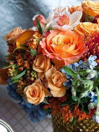 Жизнь в цвете (Фото Подборки)