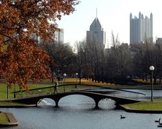 Thinking about taking the boys and going to Pittsburgh again this month since I'm not working anymore. autumn in pittsburgh