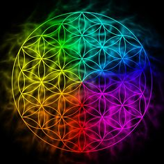 Illustration about Rainbow flower of life with aura - symbol of sacred geometry. Illustration of merkaba, extrasensory, holistic - 51630489 Astrology Numerology, Numerology Chart, The Golden Mean, Astrology Report, Les Chakras, Higher State Of Consciousness, Platonic Solid, Everything Is Connected, Wealth Affirmations