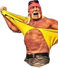 Nwo Hulk Hogan Ringside Collectibles Nwa Wcw