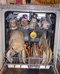 How A Dishwasher Really Works