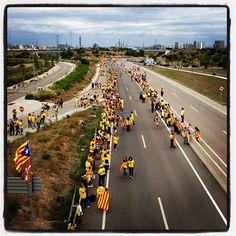 #tram213 #tram214 #Viacatalana #11s2013