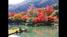Jardín tradicional japonés en Kyoto, un bellísimo día de otoño.