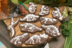 Cool cookies at a dinosaur birthday party! See more party ideas at CatchMyParty.com!