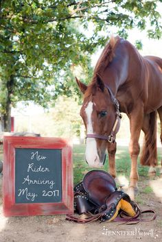 Super baby announcement pictures with horses 15 Ideas Country Maternity, Fall Maternity Photos, Maternity Poses, Maternity Pictures, Pregnancy Announcement Pictures, Pregnancy Announcement Photos, Pictures With Horses, Western Baby Pictures, Cowboy Baby Shower