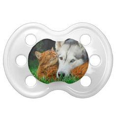 #funny - #Somali Cat Siberian Husky Cute Friends Huddle Love Pacifier