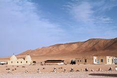 syria desert | flat,800x800,070,f.jpg