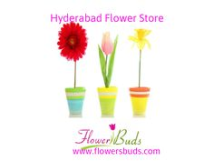 http://www.pinterest.com/flowersbuds/free-bouquet-delivery-in-hyderabad/