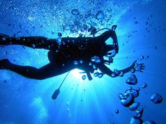 Don't wait any longer. Dive in the ocean, leave and let the sea be you @greenwichdiving.com