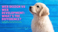 If you are thinking of pursuing a career as a web designer or web developer then this video is for you. It can be hard to know where to start and which road is the right one for you to travel down. Although there are some inherent similarities between the two roles they are very different in nature. One is focused on aesthetics and usability, the other is focused on code and functionality.  For More E-Courses visit us at: www.online-ebooks.co.za