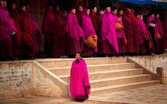 Das Tashilhunpo Kloster war der offzielle Sitz meherer Panchen Lamas und beherbergt eine riesige Buddhastatue. Das Kloster hat eine sehr wichtige Bedeutung für Tibetaner.
