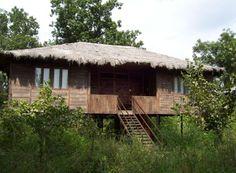 Tiger N Woods Resorts, Pench, Madhya Pradesh Wildlife Tourism, Wooden Cottage, Madhya Pradesh, India Travel, Hotels And Resorts, Lodges, Gazebo, Woods, Outdoor Structures