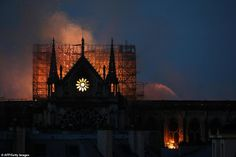 Our Lady in ruins: First daylight photos reveal devastating aftermath of Notre Dame inferno as criminal investigation into cause of the fire focuses on restoration experts who were working on spire Saint Chapelle, Stained Glass Rose, Ile Saint Louis, York Minster, Les Religions, Windsor Castle, Victor Hugo, Pope Francis, Our Lady