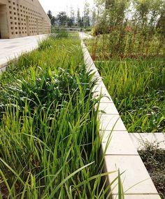 Vanke_Architecture_Research_Center-by-ZT_Studio-08 « Landscape Architecture Works | Landezine