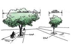 Plantar un árbol en la acera es una gran manera de contribuir al mantenimiento del