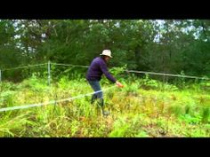 Advanced Cell Grazing with Geoff Lawton