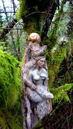 Shaping Spirit driftwood sculpture by Debra Bernier on Etsy