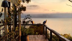 Satellite Island - Gallery - Hotel & Private Island
