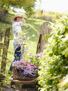 Country Living - garden delight