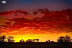 Kruger National Park, Weekend Breaks, East Africa, Day Tours, Weekend Getaways, Yearning, Celestial, Sunset, Holiday