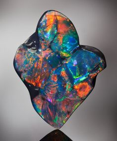 Black Opal - Natural History Signature Auction (20 May 2012) - Heritage Auctions Dallas