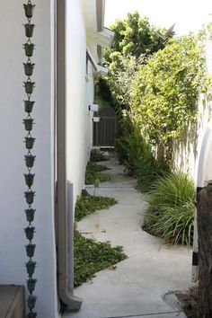 The narrow side yard feels less like lost space thanks to a path that eschews linear in favor of curvaceous. The area is a repository for plants that Keidan pulled while streamlining the look of the backyard.