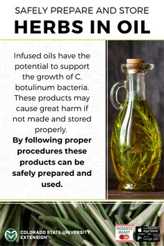 Herb-infused oils are a delicious and fun way to preserve fresh herbs, but also, unfortunately, have the potential to support the growth of botulism. Keep safe by using, refrigerating or freezing within 3 days. (And if gifting, remind recipient to keep refrigerated!) Learn more by visiting the link. Flavored Oils, Infused Oils, Preserve Fresh Herbs, Fresh Dill, Cheese Cloth, Food Safety, Drying Herbs, Food Preparation, Fruits And Vegetables