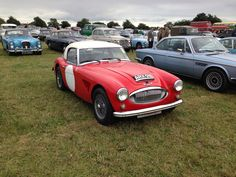Original Works Healy 3000 in the car park at Goodwood  2013